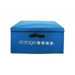 Collapsible Storage Trunk: assorted colors